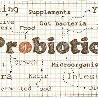 Let's Talk (Good) Bacteria: The Best Probiotic Strains for Your Gut