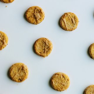 Gluten-Free Peanut Butter Dog Treats Recipe + Petcurean GO!