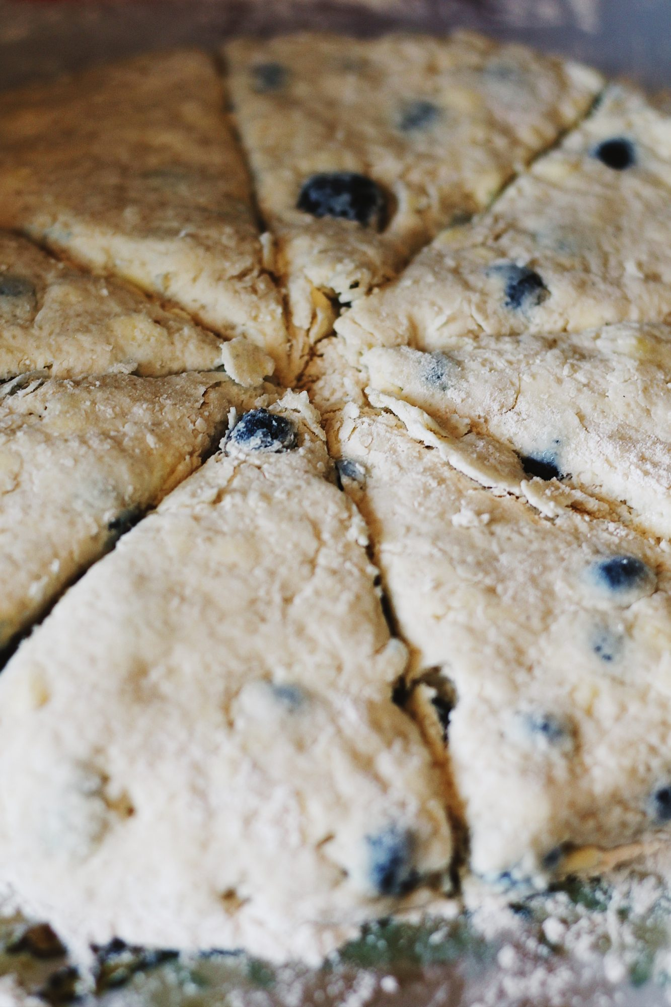 Blueberry Rose Scones