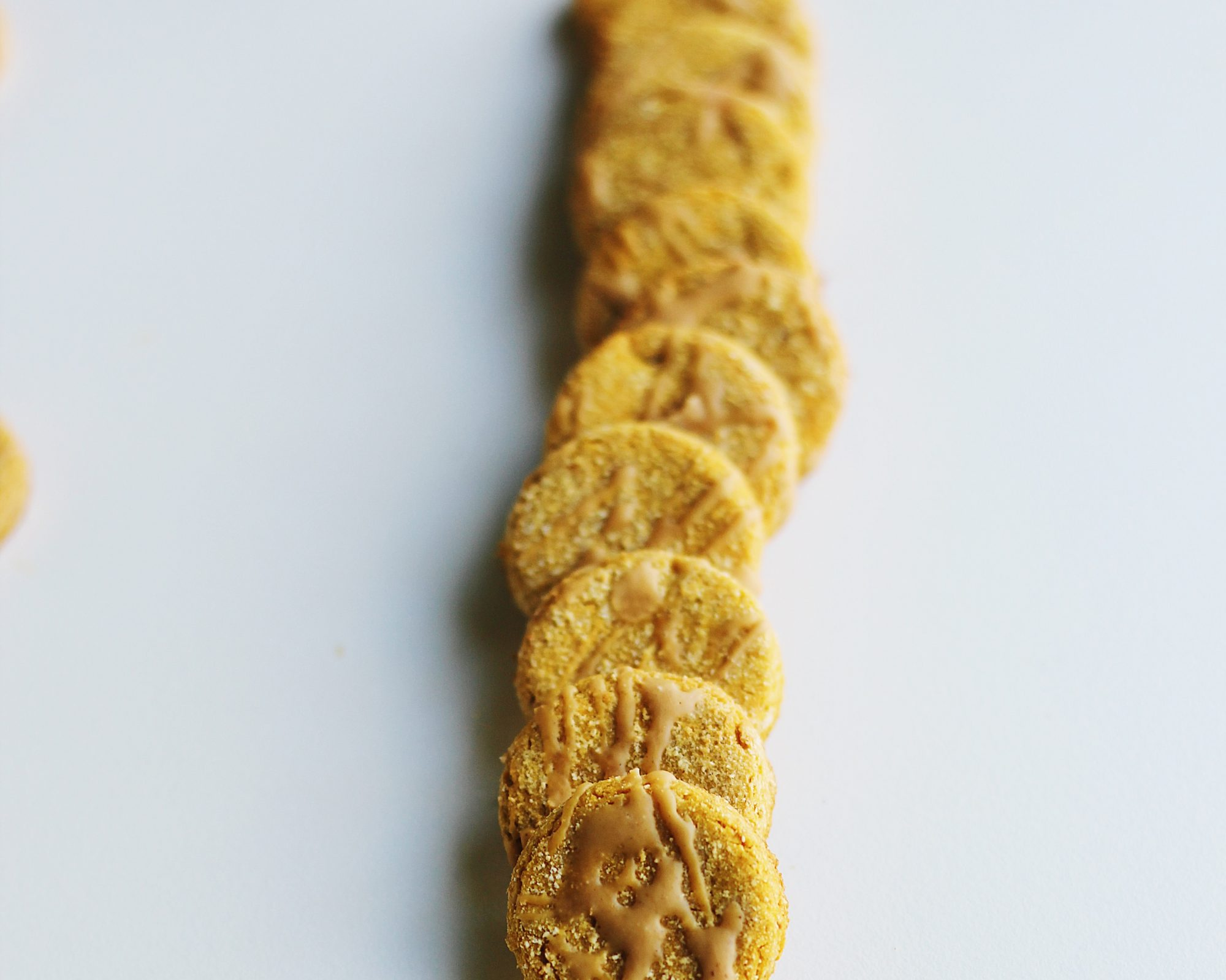 Gluten-Free Peanut Butter Dog Treats