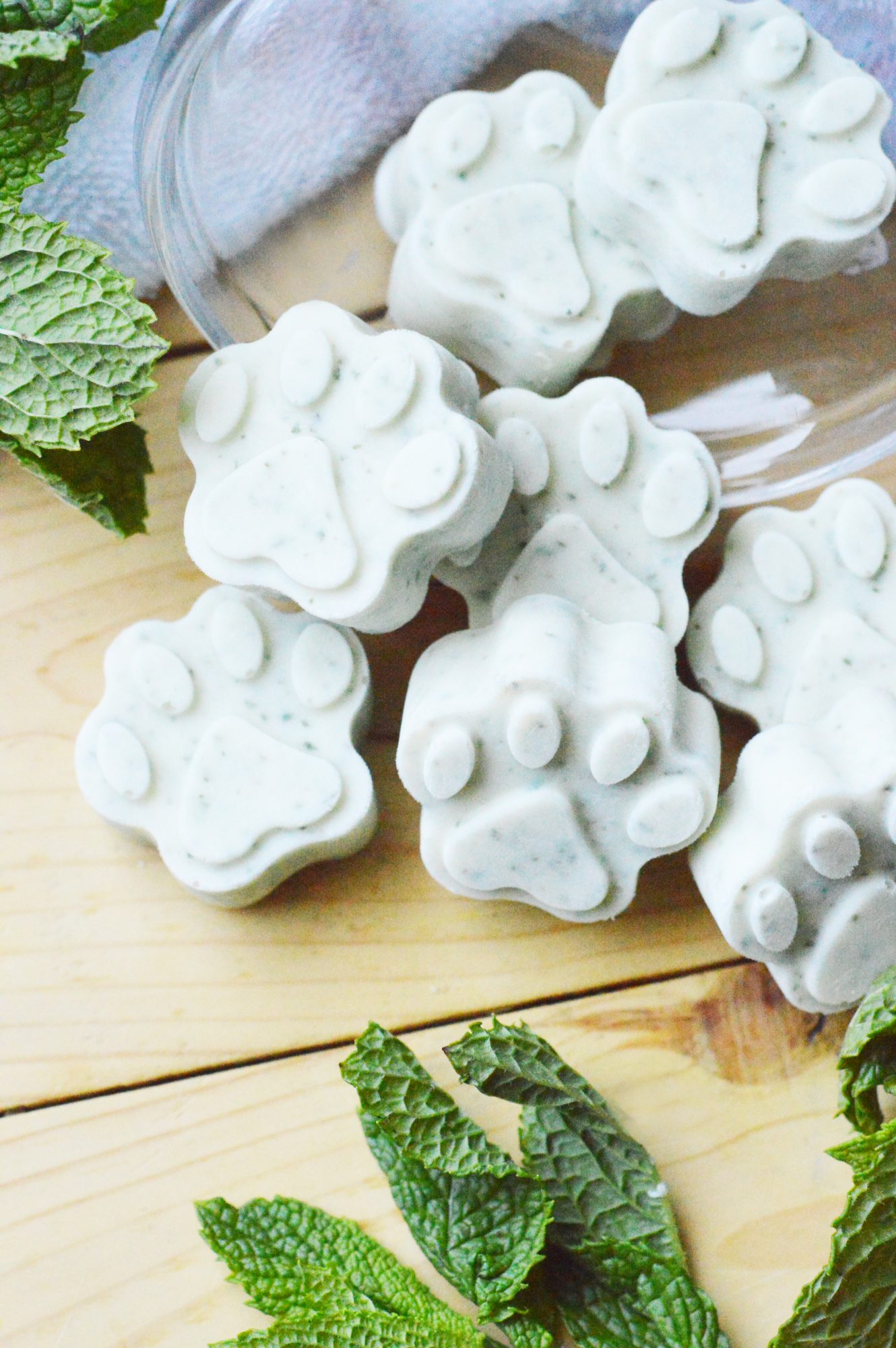 Fresh mint frozen dog treats for fresh breath