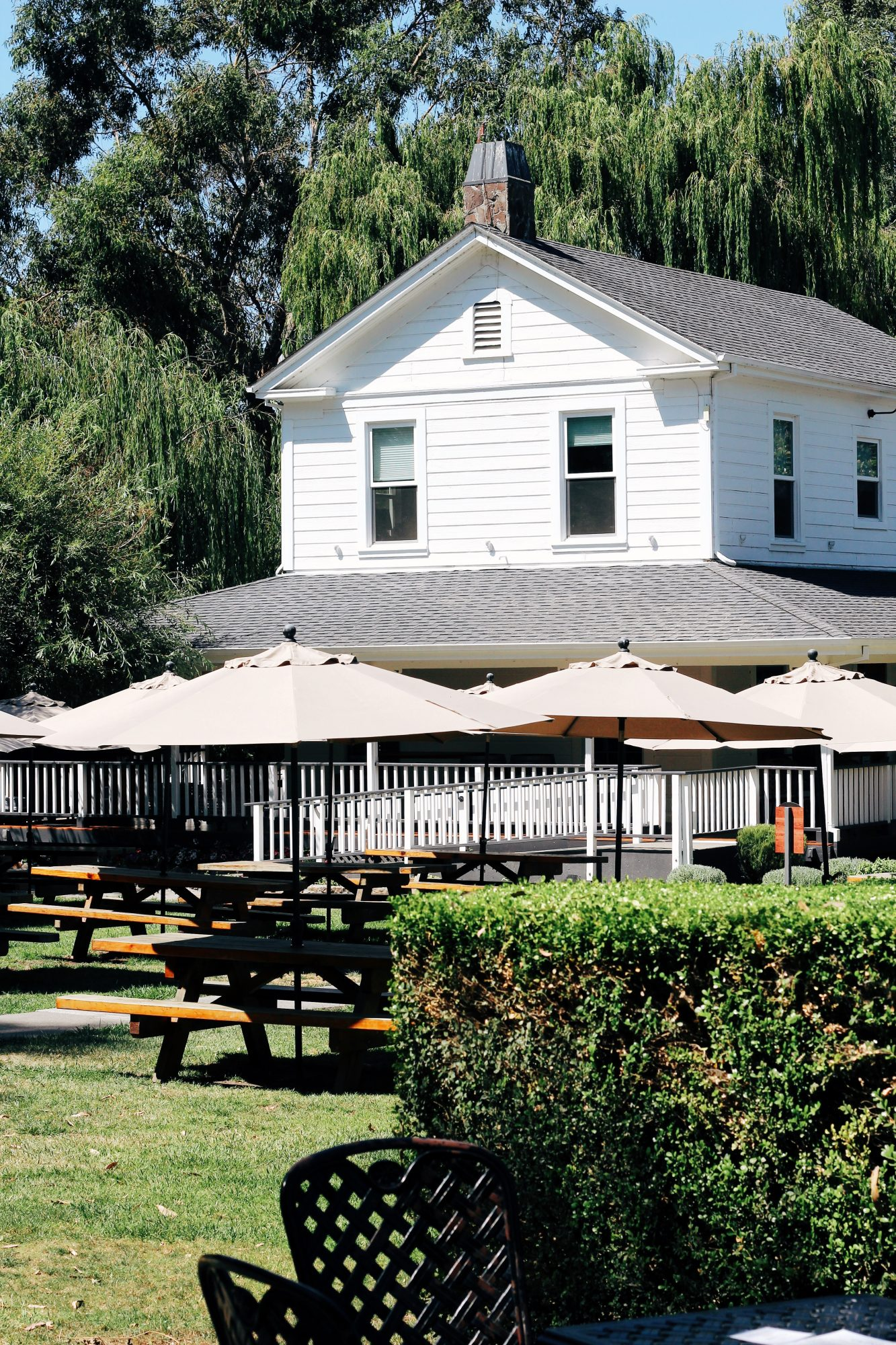 spend the day at Cline Winery in Sonoma