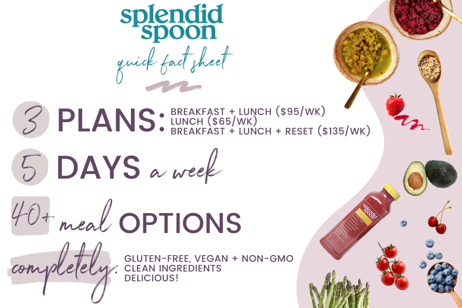 Splendid Spoon review and discount