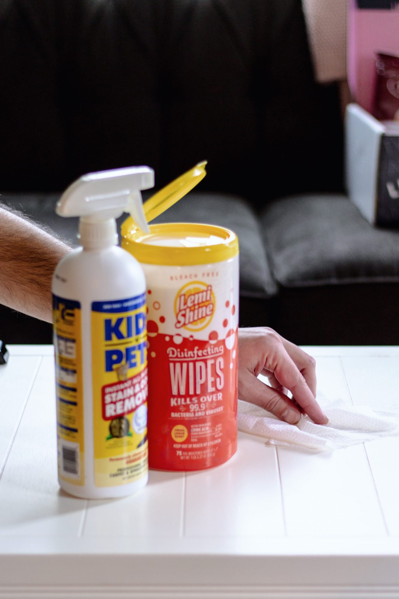Disinfecting Wipes from LemiShine and Stain & Odor Remover from Kids n Pets