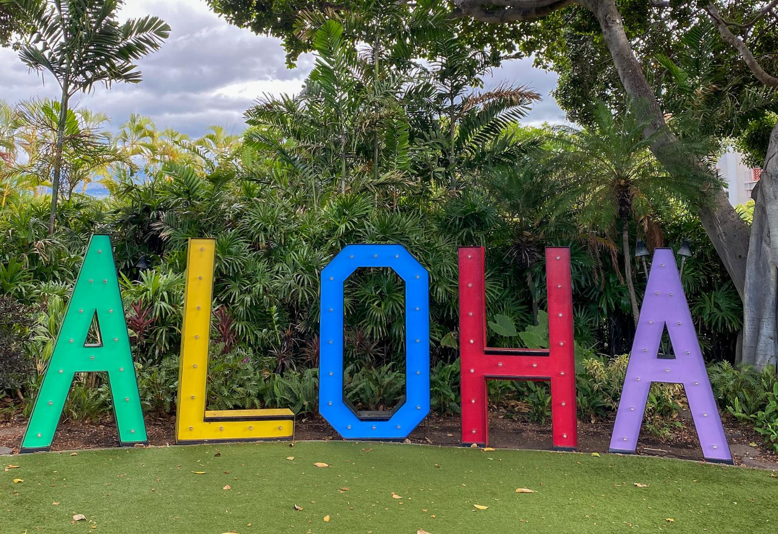 an overview of Wailea Beach Resort Marriott Maui